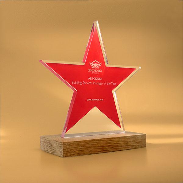 Freestanding Acrylic Award Oak Base