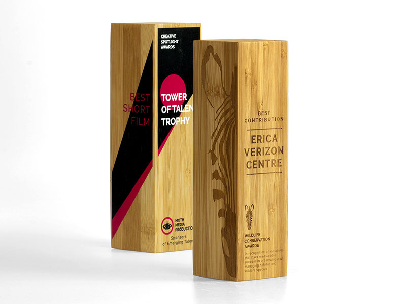 Bamboo Column Awards