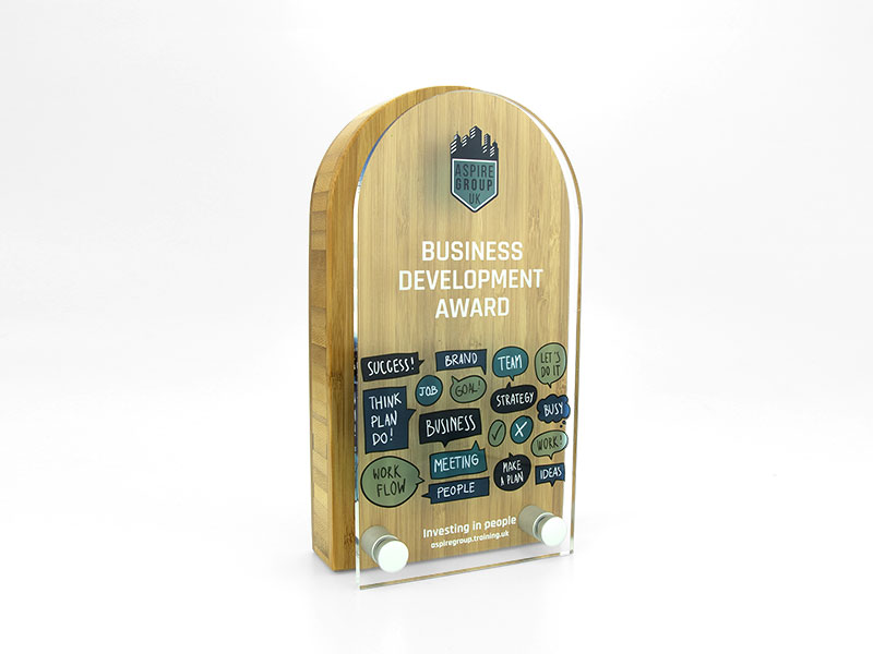 Bamboo Block Award with Acrylic Front - Arch